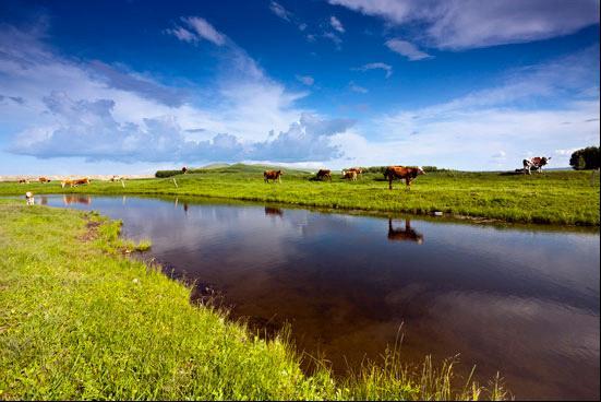 总行程2800 公里   主要景点:额吉淖尔盐湖,西乌草原,东乌草原,乌拉盖