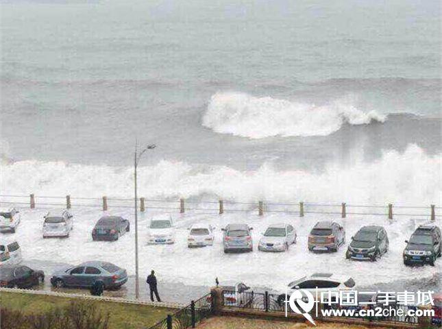 青岛前海掀起巨浪图片分享 汽车们也体验了回冲浪