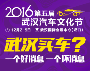 2016武汉汽车文化节