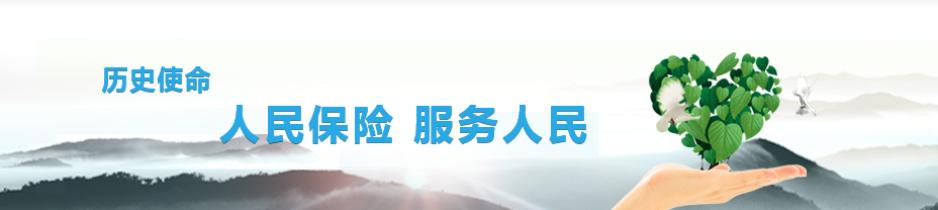 见证中国人保车险服务的创新升级
