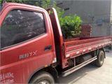 福田 奥铃 载货车 TX 2.8L(85kw)(轴距2800)单排
