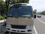 丰田 柯斯达 2007款 豪华车 (23)汽油