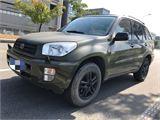 丰田 RAV4 丰田RAV4进口2.0  绿