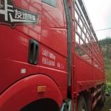 一汽解放 J6 载货车 350马力