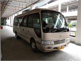 丰田 柯斯达 2011款 豪华车 (20)柴油
